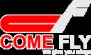 Logo V15 II gri